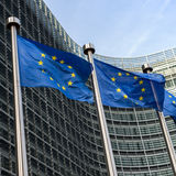 European Union flags Royalty Free Stock Photo