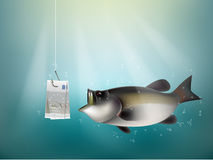 European union money paper on fish hook. Fishing using European union cash as bait, European union investment risk concept idea Stock Images