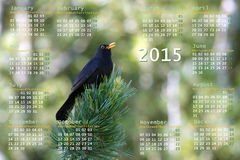 European 2015 year calendar with black bird. On a branch Stock Photo