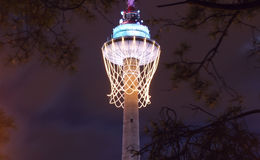 Europees basketbal 2012 symbool Stock Foto's
