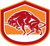 Europees Bison Charging Shield Retro Stock Afbeeldingen