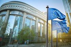 Europeisk facklig flagga mot parlamentet i Bryssel Royaltyfria Bilder