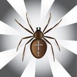 Europeisk vektorillustration för trädgårds- spindel Arkivbild