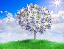 Europeiska pengar Trey Arkivbild
