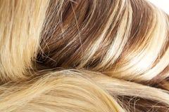 Europeiskt hårinslag för mänskligt hår för hårförlängning Brun för texturcloseup för blont hår modell arkivbilder