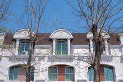Europeiskt hus med främsta döda träd royaltyfri bild