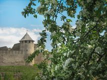 europejczycy Fotografia stary forteca na tła i okwitnięcia jabłoni jest na przedpolu Niebieskie niebo z chmurami jest dalej zdjęcie royalty free