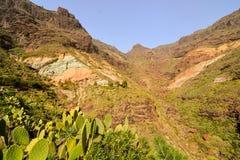 Europejska naturalna wieś w Agaete Gran Canaria Zdjęcie Stock