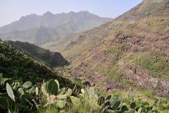 Europejska naturalna wieś w Agaete Gran Canaria Zdjęcia Royalty Free