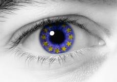 europejski oko Zdjęcia Royalty Free