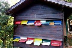 Europejski pszczoła dom Zdjęcia Stock