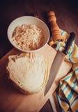 Europejski sauerkraut Fotografia Royalty Free