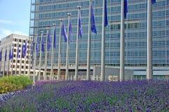 europejski zjednoczenie Zdjęcia Stock