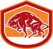 Europeo Bison Charging Shield Retro Illustrazione Vettoriale