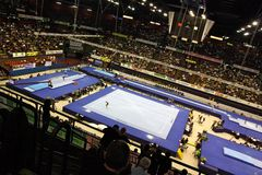 Europese Artistieke Gymnastiek- Kampioenschappen 2009 Royalty-vrije Stock Fotografie