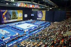 2013 Europese Artistieke Gymnastiekkampioenschappen Stock Foto