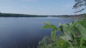 Europese rivier van de heuvel in de zomer stock video