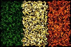 Europese Vlag - het Branden Kleurenontwerp royalty-vrije illustratie