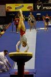 Europäische künstlerische gymnastische Meisterschaften 2009 Stockfotografie