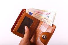 Euros de portefeuille de voyage - Frances Images libres de droits
