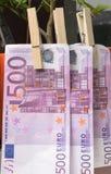 500 Euros, die im Stift am Baum trocknen Stockfotografie