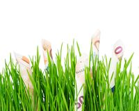 Euros growing on grass Royalty Free Stock Photography