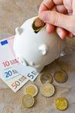 Eurosedlar och mynt med spargrisen Arkivfoton