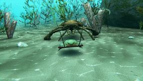 Eurypterus Chasing Trilobite Animation. An animation of Eurypterus chasing a Trilobite on a sea bottom. Eurypterids are related to arachnids and include the stock video