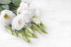 Eustoma das flores brancas em um fundo de madeira branco com lugar para a inscrição foto de stock royalty free