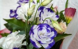 Eustoma en un ramo hermoso con otras flores para el holida Fotografía de archivo libre de regalías