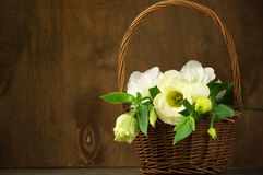 Eustoma flowers in basket Stock Photos