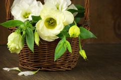 Eustoma flowers in basket Royalty Free Stock Images