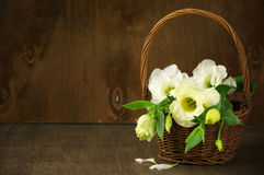 Eustoma flowers in basket Stock Photography