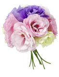 Eustoma flowers Royalty Free Stock Images
