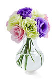 Eustoma flowers Royalty Free Stock Image