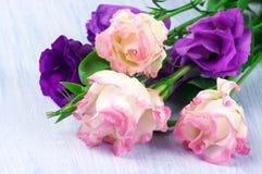 Eustoma flowers Stock Photo