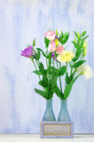 Eustoma flowers Stock Photography