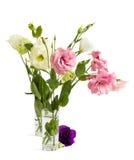 Eustoma lisianthus Royalty Free Stock Photo