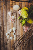 Eustoma and  seashells in the shape of heart Stock Photo