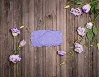 Eustomaen blommar runt om purpurfärgat pappers- kort för hantverk med tomma copys Royaltyfria Foton