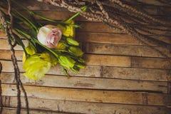Eustomaen och steg ligga på ett träbräde Arkivfoto