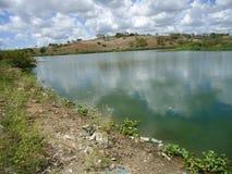 Eutrophierung im brasilianischen Fluss stockbilder