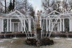 Eva Fountain em Peterhof, St Petersburg em Rússia Imagem de Stock