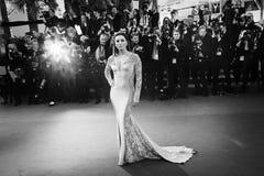 Eva Longoria Royalty Free Stock Images