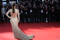 Eva Longoria royalty free stock photography