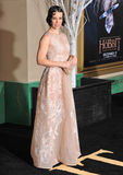 Evangeline Lilly Stock Image