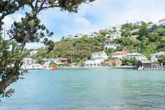Evans Bay Wellington Royalty Free Stock Images
