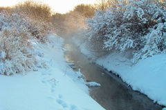 Evaporation of a stream. Of warm water in winter Royalty Free Stock Image