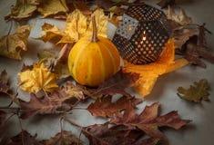 Eve di Halloween Fotografia Stock