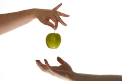 Eve gives apple to adam. Eve gives a green apple to adam Stock Images